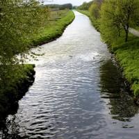 Fluss mit Fieber – Wie die Erft dem Tagebau zum Opfer fällt